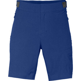 Norrøna M's /29 Flex1 Shorts Ocean Swell
